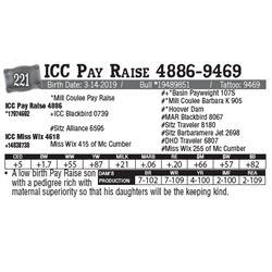 Lot - 221 - ICC Pay Raise 4886-9469