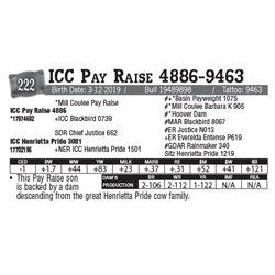 Lot - 222 - ICC Pay Raise 4886-9463