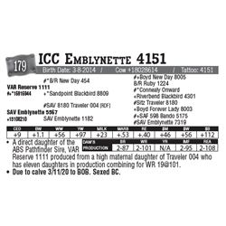 Lot - 179 - ICC Emblynette 4151
