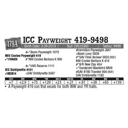 Lot - 179A - ICC Payweight 419-9498