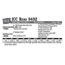 Lot - 180A - ICC Reno 9492