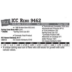 Lot - 183A - ICC Reno 9462