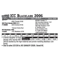 Lot - 187 - ICC Blacklass 3006