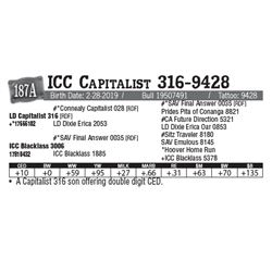 Lot - 187A - ICC Capitalist 316-9428