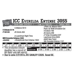 Lot - 189 - ICC Everelda Entense 3055