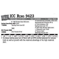 Lot - 190A - ICC Reno 9423
