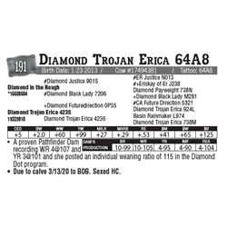 Lot - 191 - Diamond Trojan Erica 64A8