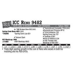 Lot - 192A - ICC Reno 9482