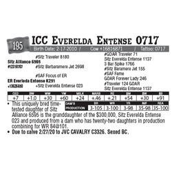 Lot - 195 - ICC Everelda Entense 0717