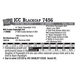 Lot - 154 - ICC Blackcap 7456