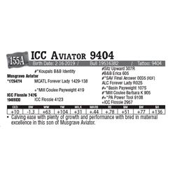 Lot - 155A - ICC Aviator 9404