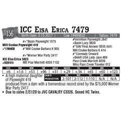 Lot - 156 - ICC Eisa Erica 7479