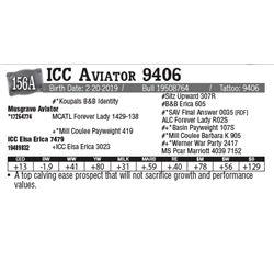 Lot - 156A - ICC Aviator 9406