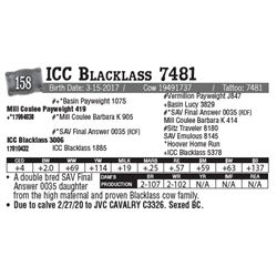 Lot - 158 - ICC Blacklass 7481