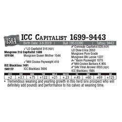 Lot - 158A - ICC Capitalist 1699-9443