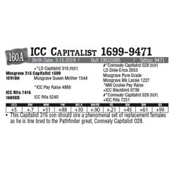 Lot - 160A - ICC Capitalist 1699-9471