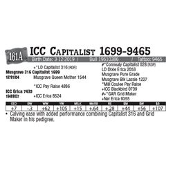 Lot - 161A - ICC Capitalist 1699-9465