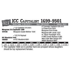 Lot - 162A - ICC Capitalist 1699-9501
