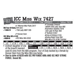 Lot - 163 - ICC Miss Wix 7427