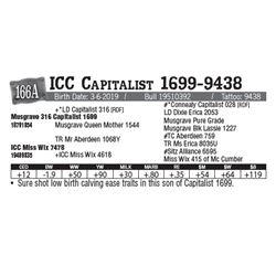 Lot - 166A - ICC Capitalist 1699-9438