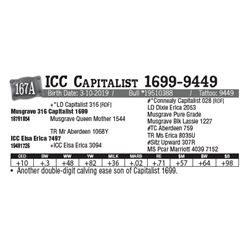 Lot - 167A - ICC Capitalist 1699-9449