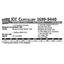 Lot - 168A - ICC Capitalist 1699-9440