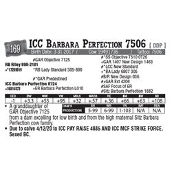 Lot - 169 - ICC Barbara Perfection 7506 [ DDP ]