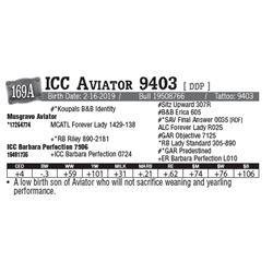 Lot - 169A - ICC Aviator 9403 [ DDP ]