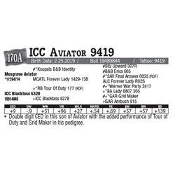 Lot - 170A - ICC Aviator 9419