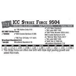 Lot - 171A - ICC Strike Force 9504