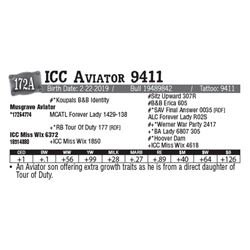 Lot - 172A - ICC Aviator 9411