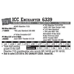 Lot - 174 - ICC Enchanter 6339