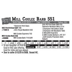 Lot - 177 - Mill Coulee Barb 551