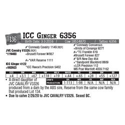 Lot - 136 - ICC Ginger 6356