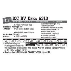 Lot - 138 - ICC BV Erica 6313