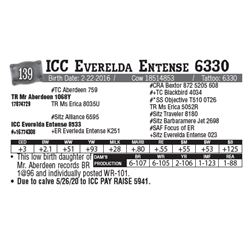 Lot - 139 - ICC Everelda Entense 6330