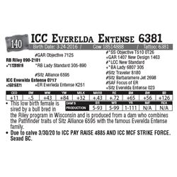 Lot - 140 - ICC Everelda Entense 6381