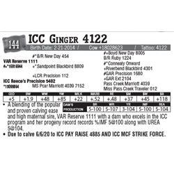 Lot - 144 - ICC Ginger 4122