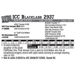 Lot - 147 - ICC Blacklass 2937