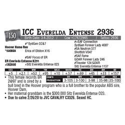 Lot - 150 - ICC Everelda Entense 2936