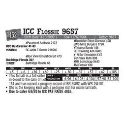 Lot - 152 - ICC Flossie 9657