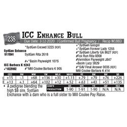 Lot - 238 - ICC Enhance Bull