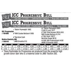 Lot - 241A - ICC Progressive Bull