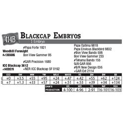 Lot - 414B - Blackcap Embryos
