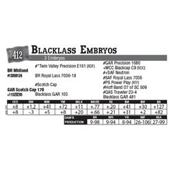 Lot - 412 - Blacklass Embryos