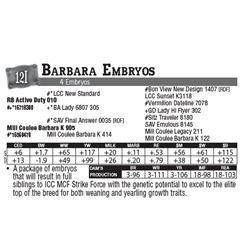 Lot - 12I - Barbara Embryos