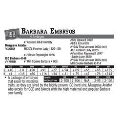 Lot - 19B - Barbara Embryos