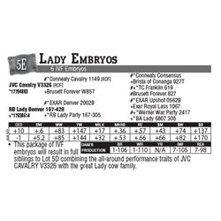 Lot - 5E - Lady Embryos