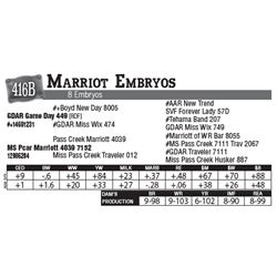 Lot - 416B - Marriot Embryos