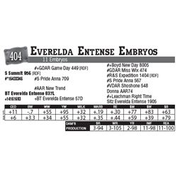Lot - 404 - Everelda Entense Embryos
